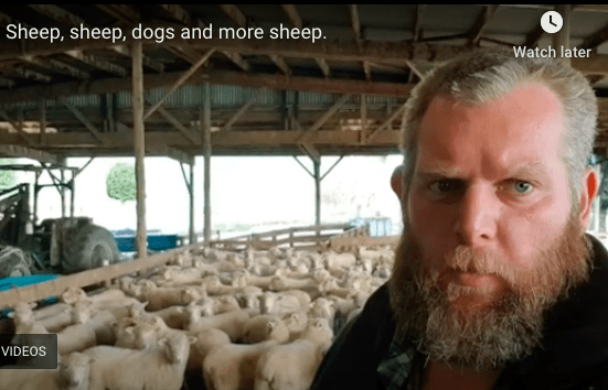 farmer Ben in New Zealand with his sheep