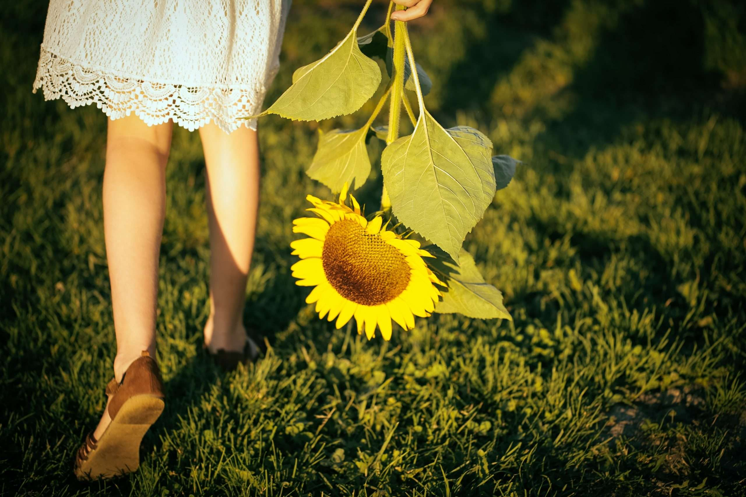 young woman walking across grass holding sunflower