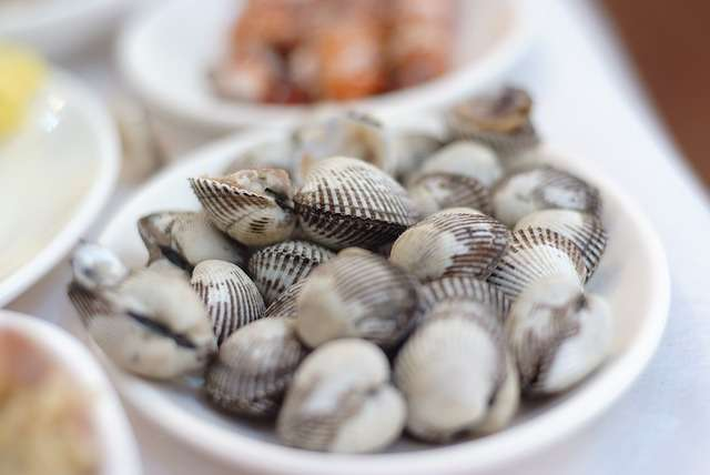 cockles in a dish